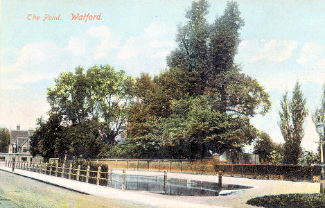 The Pond, Watford, by London View Co